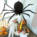 Giant Posable Shaking Spider