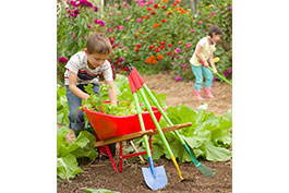 Planting and Growing a Happy and Healthy Gardener