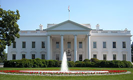 In Honor of President's Day
