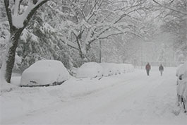 Snowmageddon's 2016 Must-Have Be Prepared List